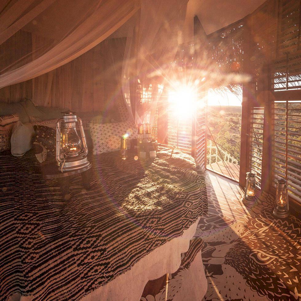 Här sover du på savannen – i ett fågelbo