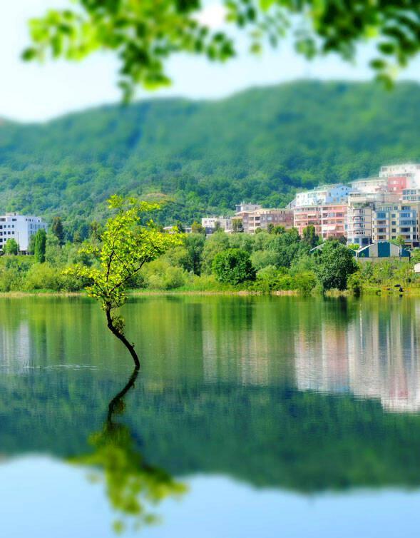 Albanien: 5 måsten i Tirana