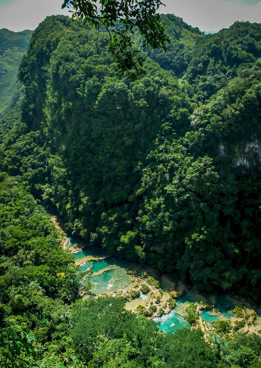 Redaktionens favoriter: Turkosa naturpooler i Guatemalas regnskog