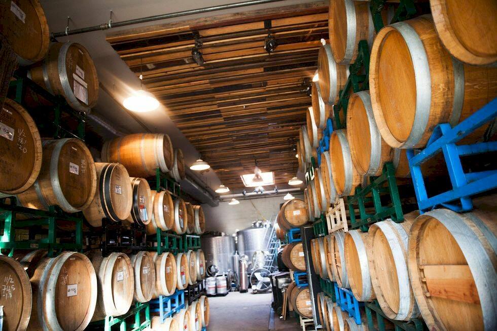 Skördetid i New York – här odlas vin i källare och på hustak