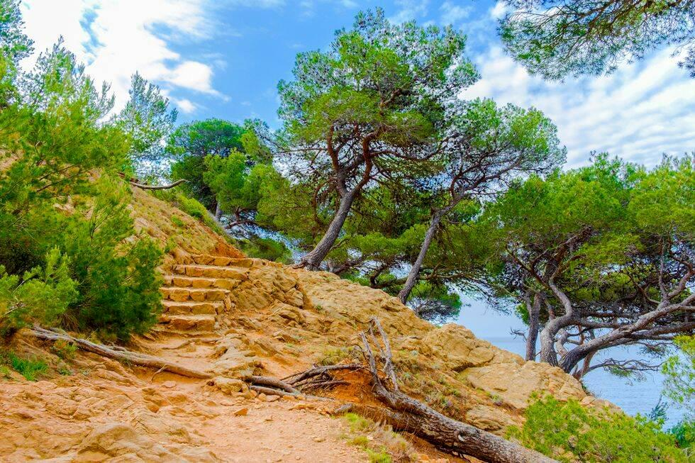 Ny vandringsled längs Medelhavet har öppnat i Frankrike