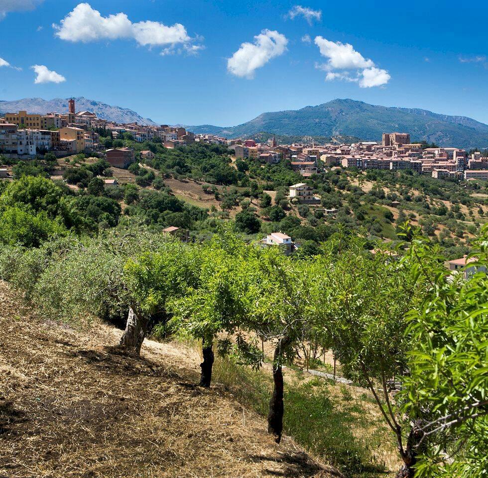 Sicilien – upptäcktsfärd på okända västkusten