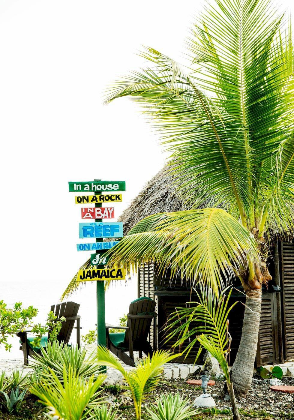 Tropiska äventyr på Jamaica