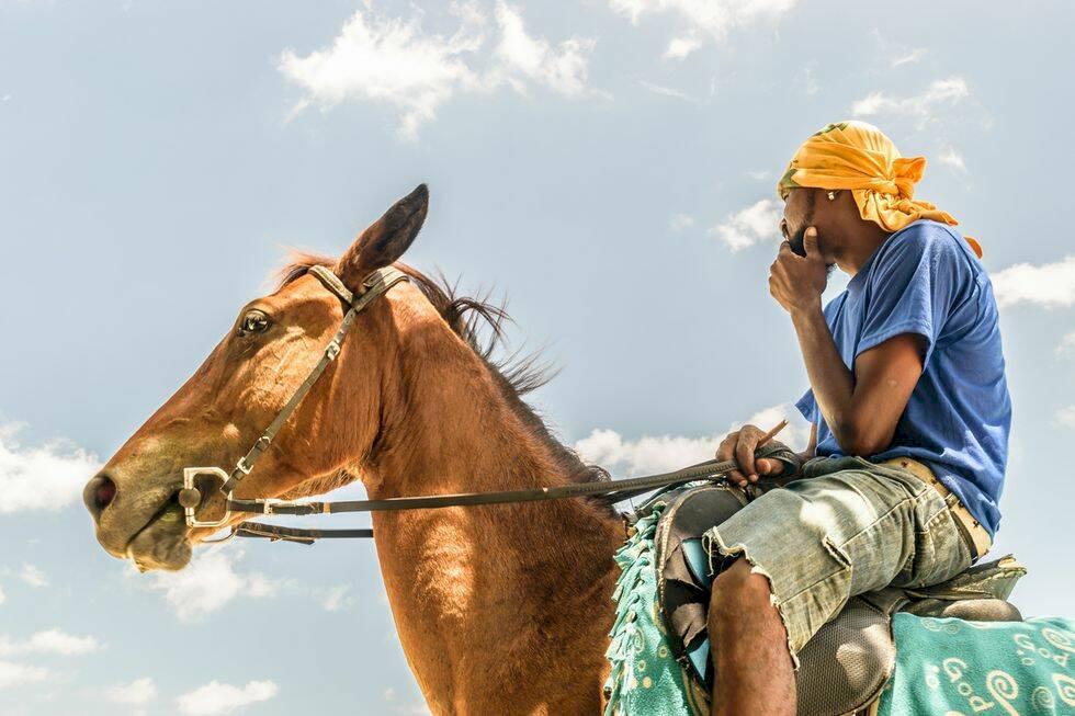 7 jamaicanska äventyr