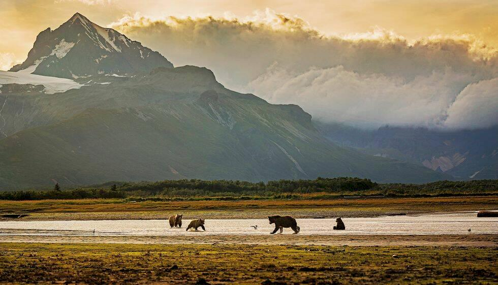Hurtigruten expanderar – snart går turer till Alaska