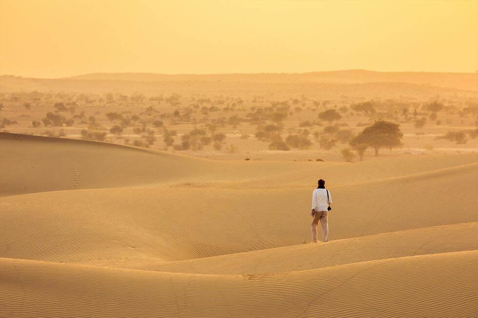 Indien: Kamelsafari i Rajasthan