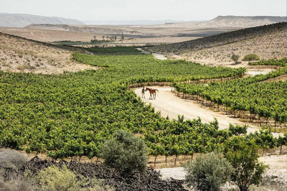 Israel – utomjordisk öken
