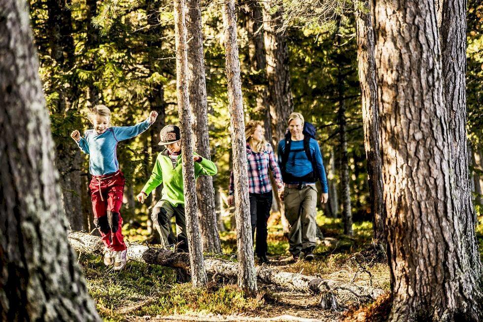 8 svenska fjällklassiker – vandra i storslagna landskap
