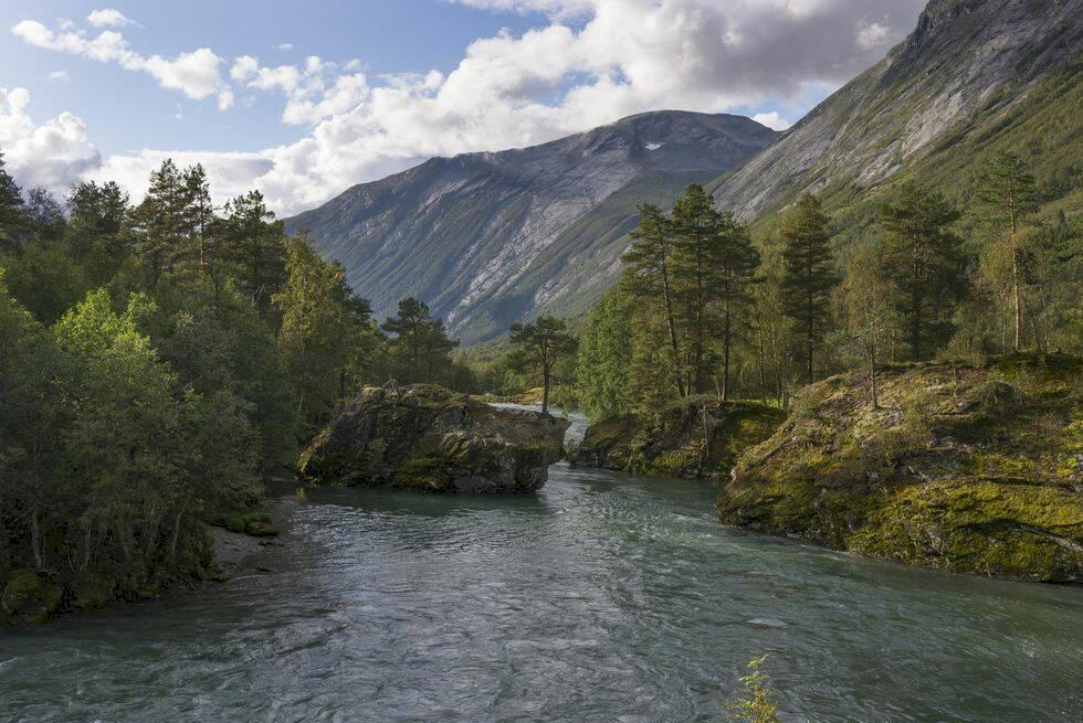 7 hotellupplevelser som gör dig ett med naturen