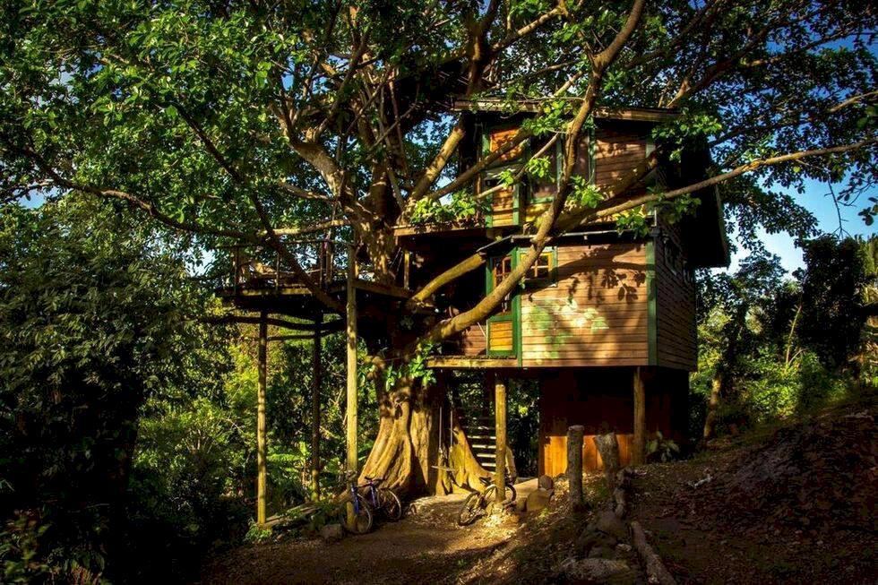 5 unika trädhus – bo mitt i skogen