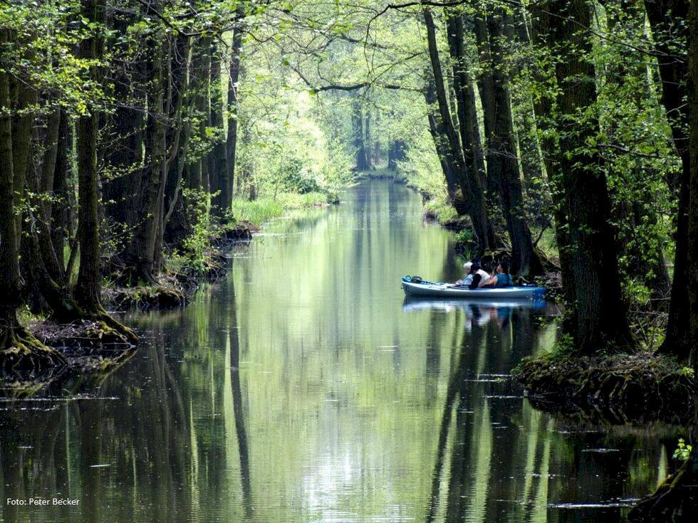 Hitta lugnet i Spreewalds vackra natur