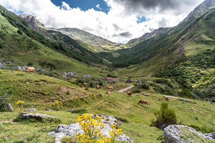 Spanien bortom storstäderna: Naturupplevelser du inte får missa