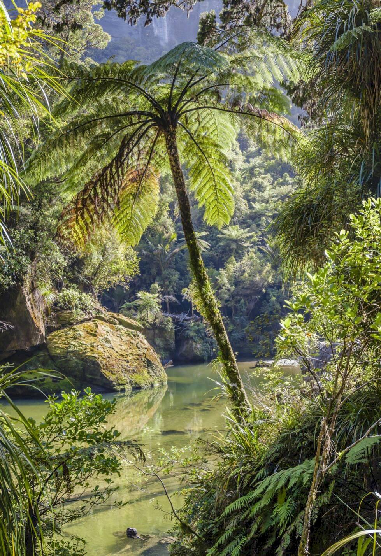 Sköna Punakaiki – Nya Zeelands bäst bevarade hemlighet