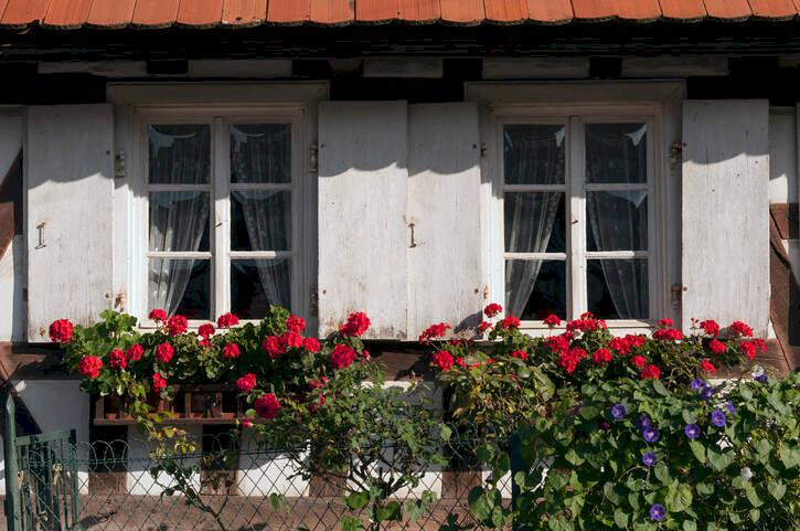 Hunspach – fransosernas favoritby i Frankrike