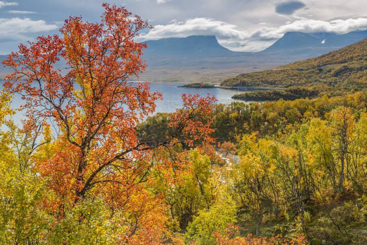 Abisko – 3 härliga dagsturer för vandring