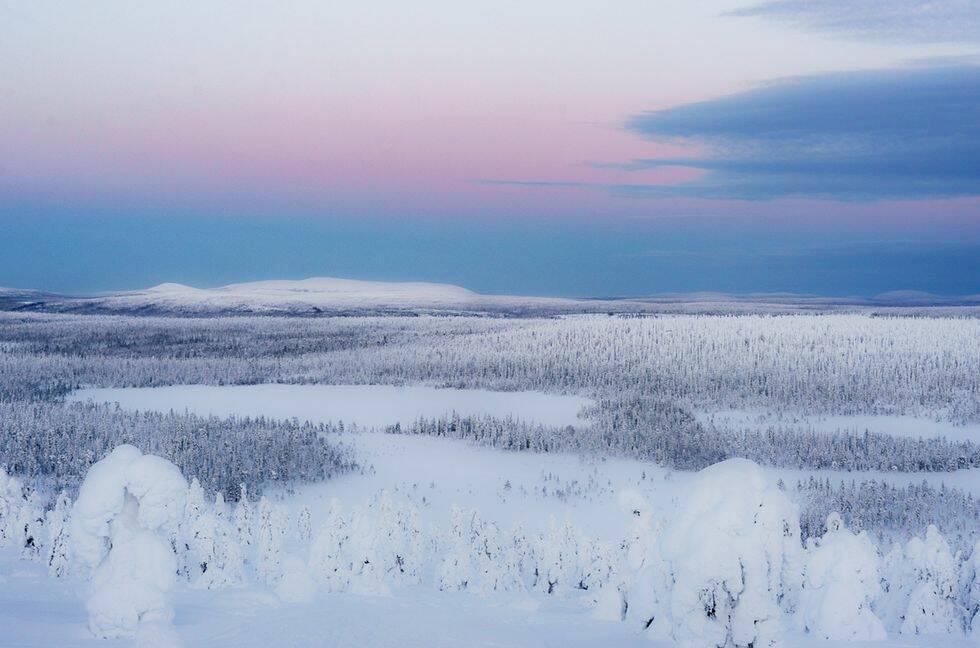 Ökat intresse för naturen – nya nationalparker planeras