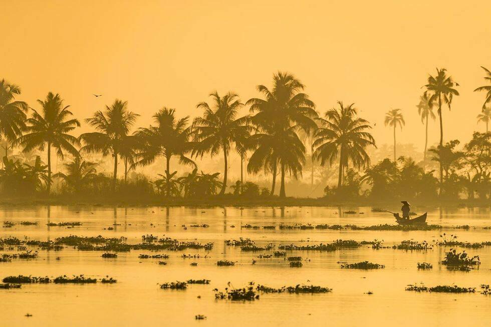 Goa & Kerala i Indien – ett ljuvlig kaos