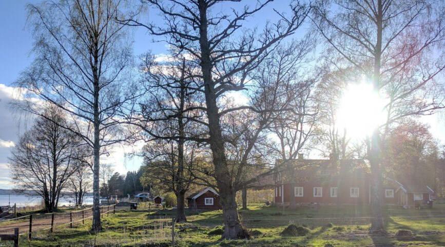 Prova livet på landet – bo på en svensk bondgård