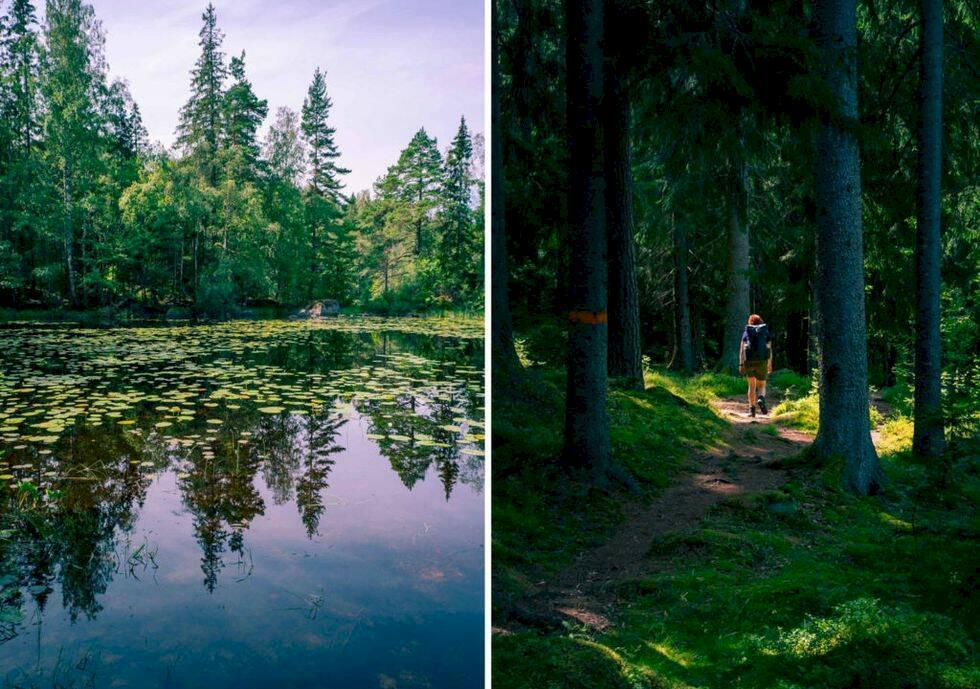 Sveriges 12 mest spektakulära vandringsleder