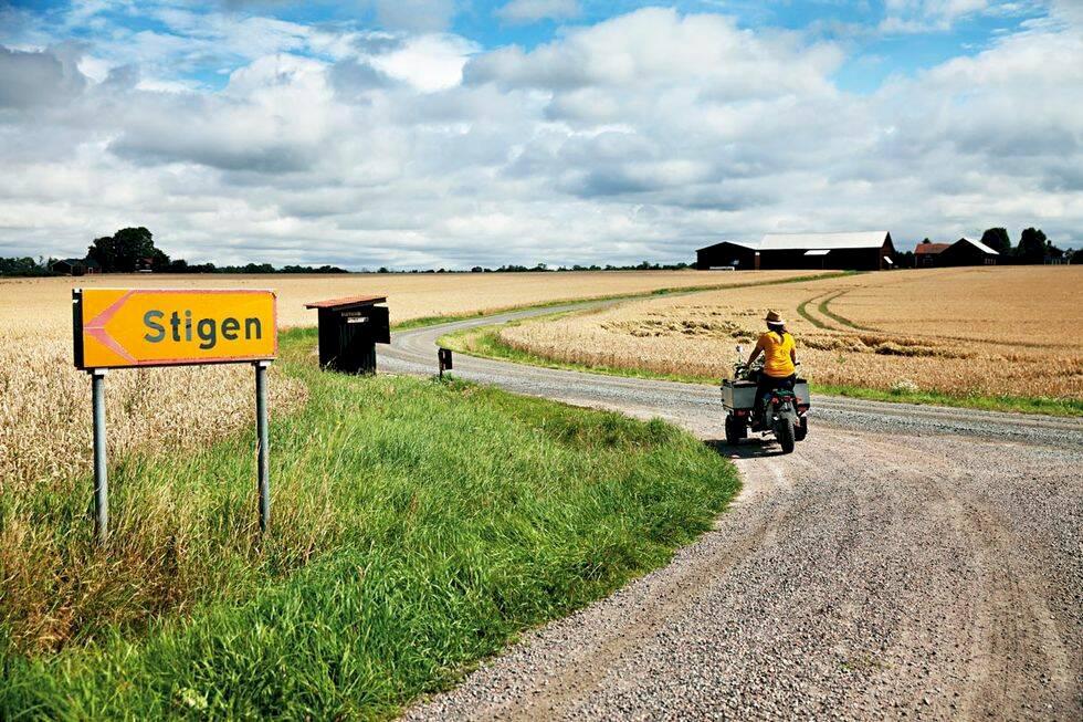5 blomsterbönder i Sverige du kan besöka