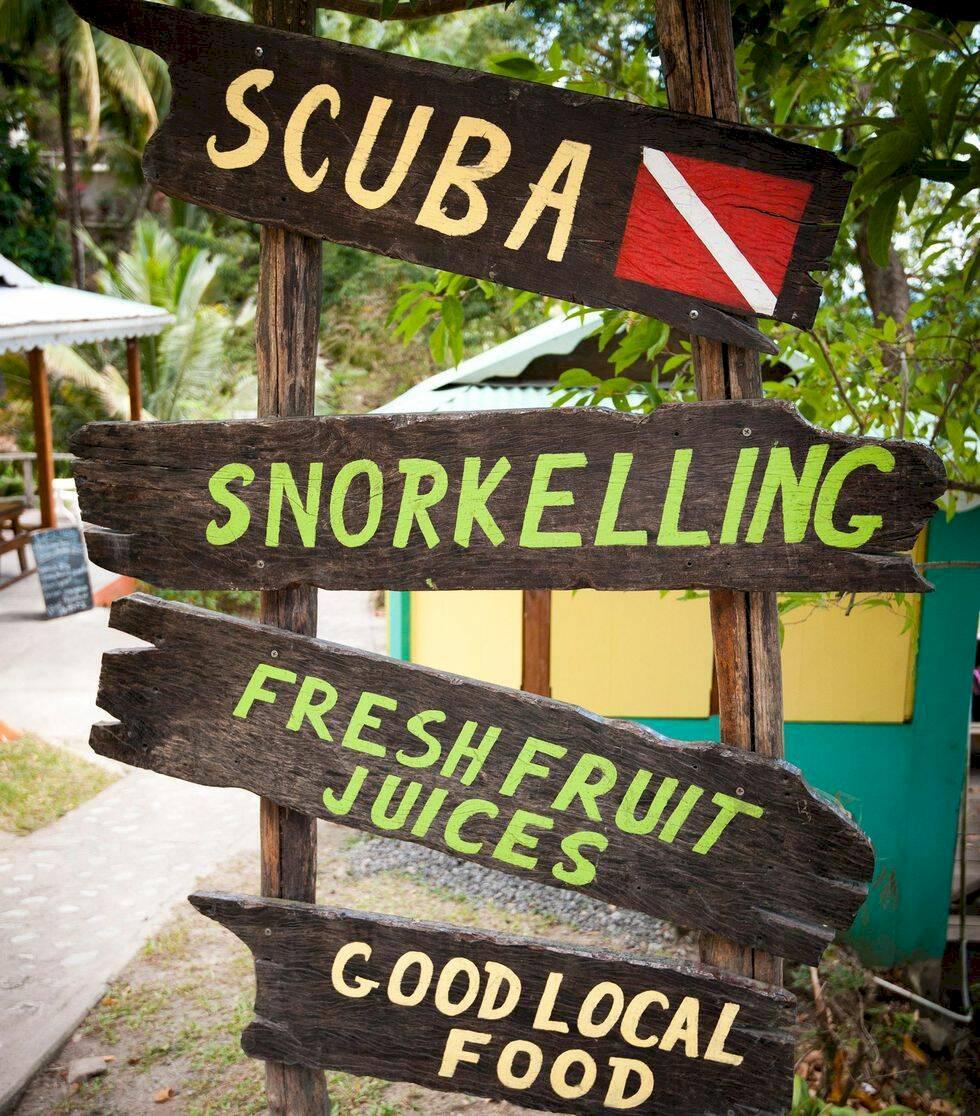 9 skäl att besöka Dominica – Karibiens orörda regnskogsö