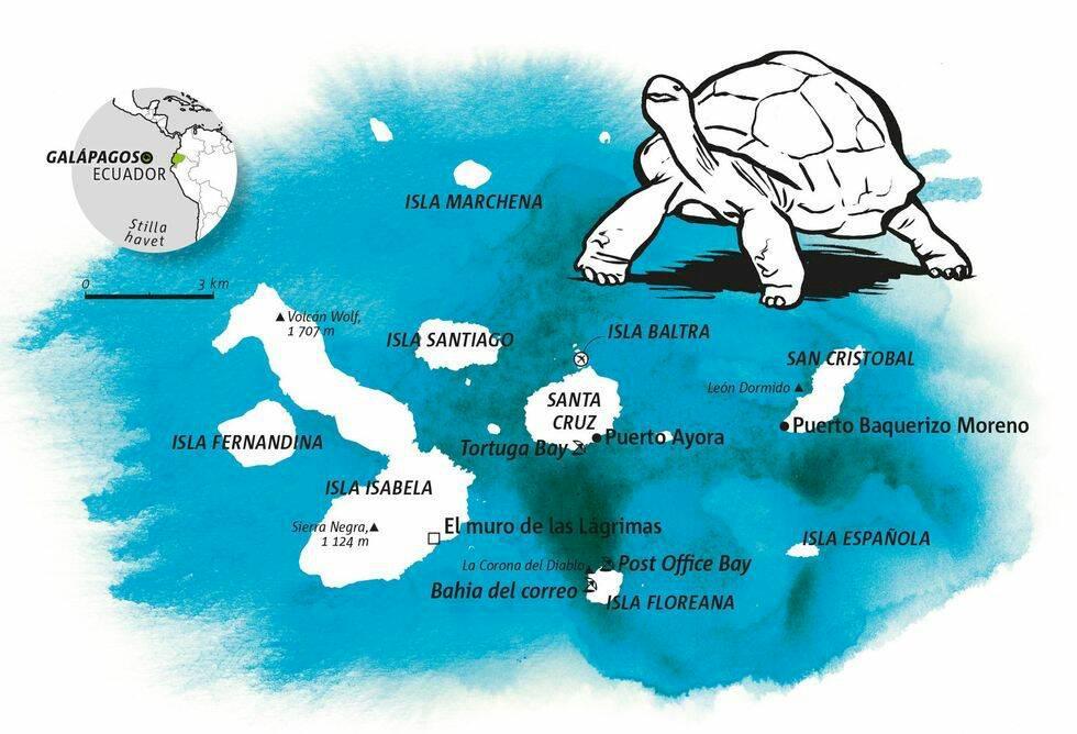 Guide: Galápagos