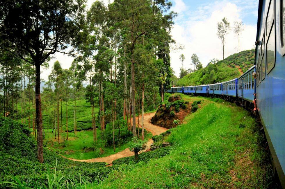 Sri Lanka – 17 måsten och sevärdheter på Indiska oceanens pärla