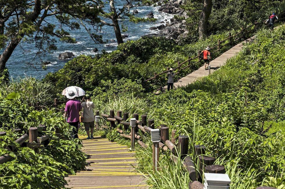 Sydkorea – upptäck exotiska ön Jeju