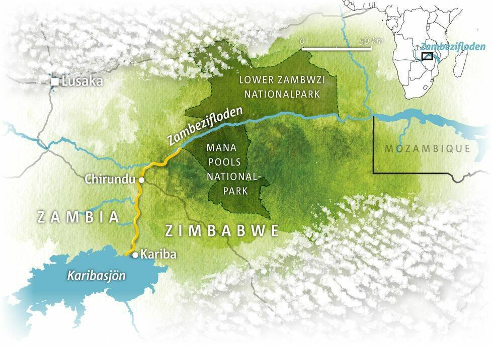 Med kanot genom Zimbabwes vildmark
