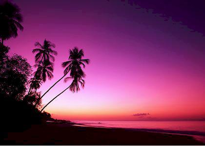 Guadeloupe - karibisk ö med kreolsk själ