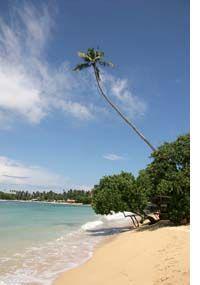 Sri Lanka hoppas på turism