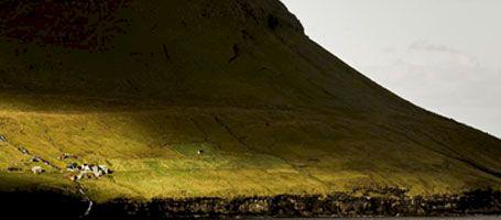 Vilda, vackra Färöarna