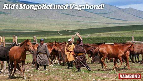 Drömresa! Rid i Mongoliet med Vagabond