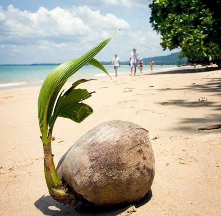 Thailand - bästa rutterna, skönaste öarna
