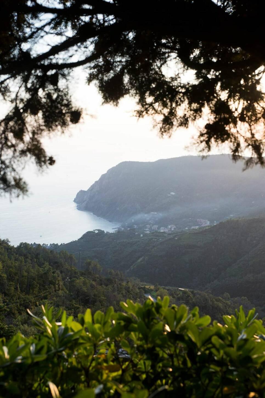 Cinque Terre – tåg, vin & vandring