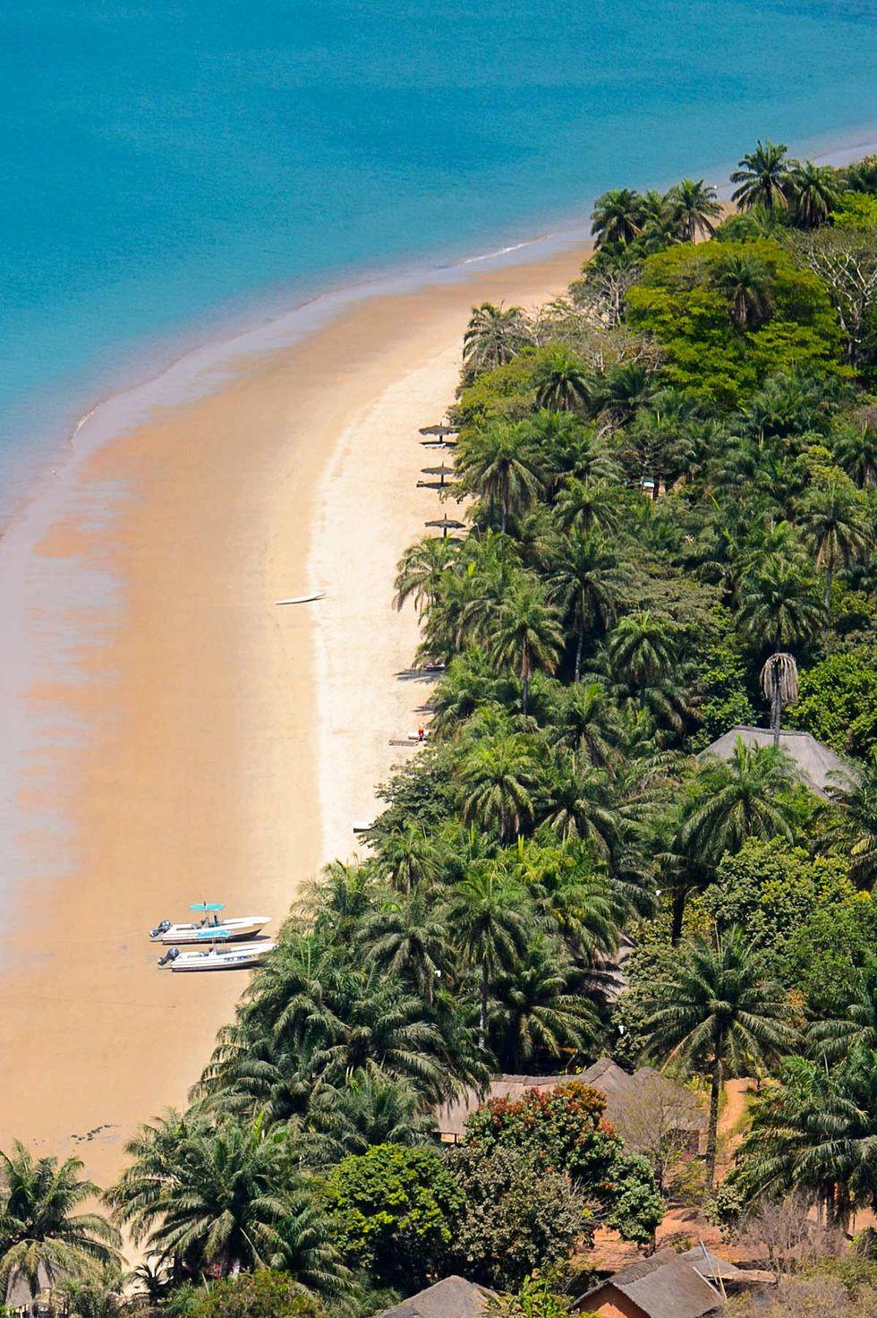 Nu kan du ta Hurtigruten till orörda djurparadis vid Västafrikas kust