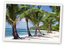 Fyra karibiska kärleksöar