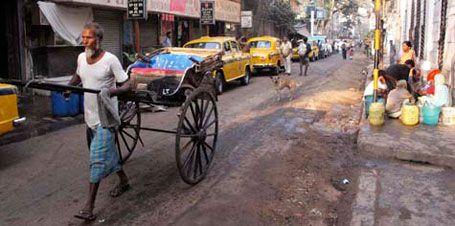 Calcutta kokar – och väntar på något